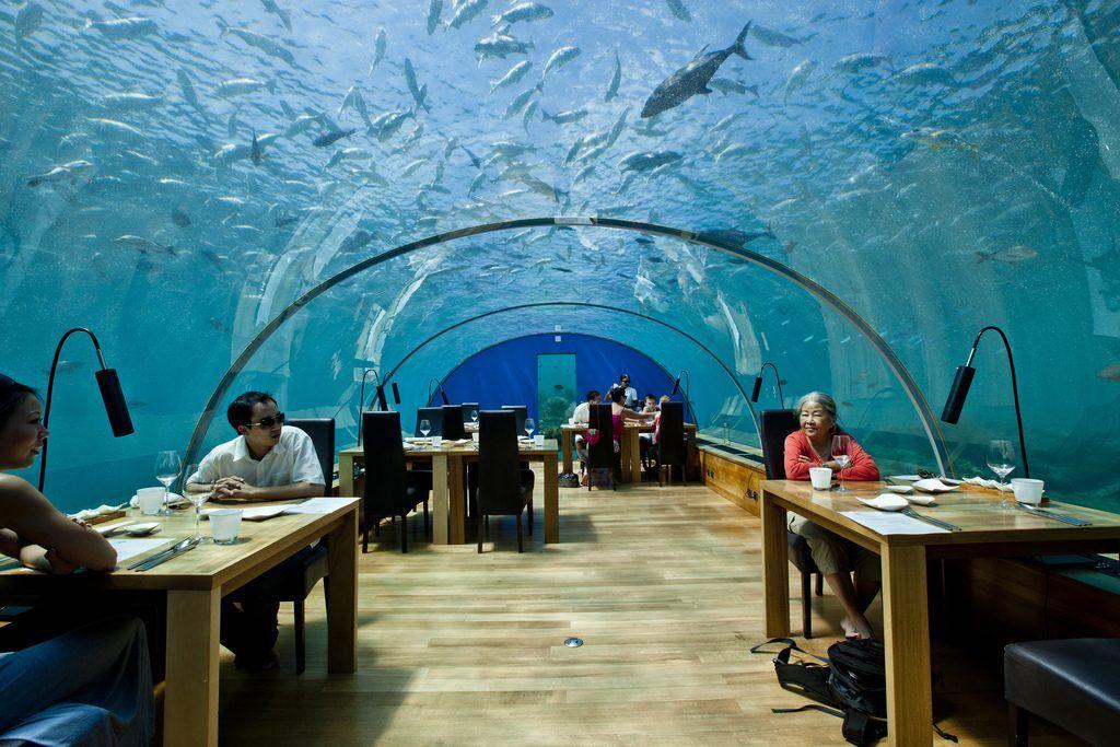Ithaa Undersea Restaurant1