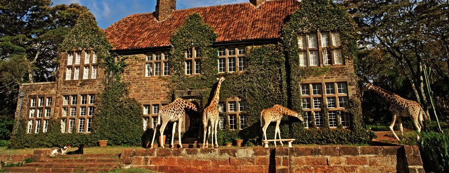 Hotel Giraffe Manor2