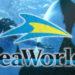 Seaworld inaugura novas atrações para os visitantes em 2017