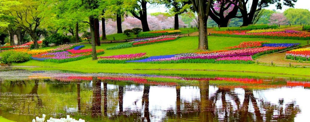 cores vibrantes e uma enorme variedade de flores