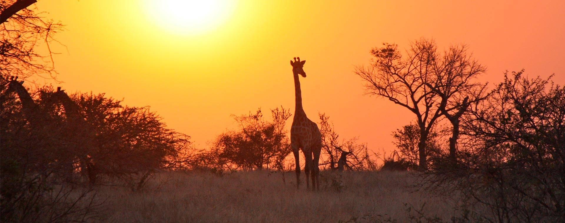 topo-zambia África